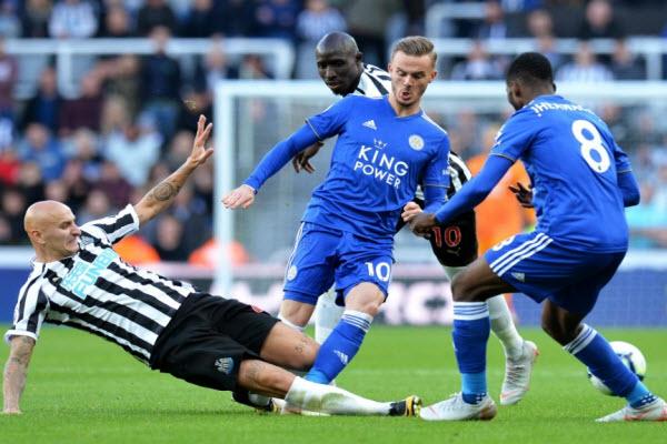 Soi kèo trận đấu giữa Leicester và Newcastle, 22h30 ngày 29/09